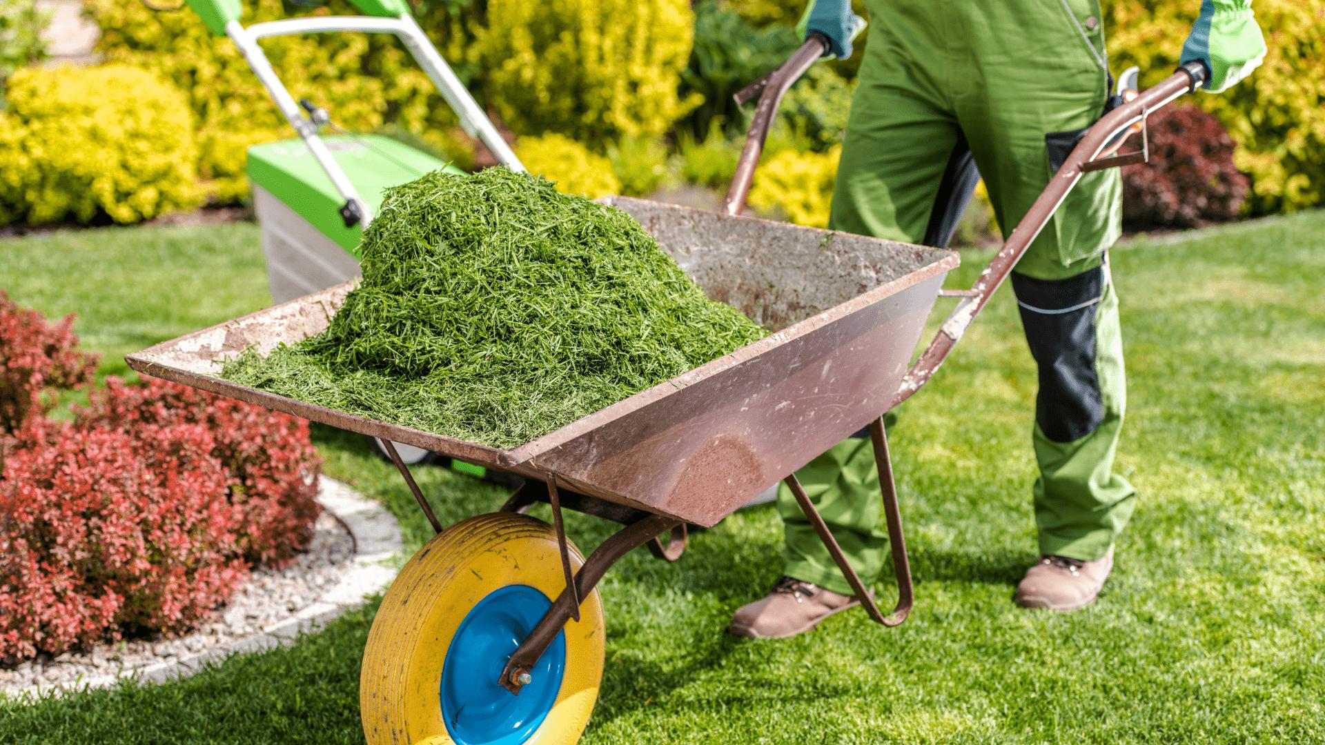servizio giardinieri garbagnate milanese